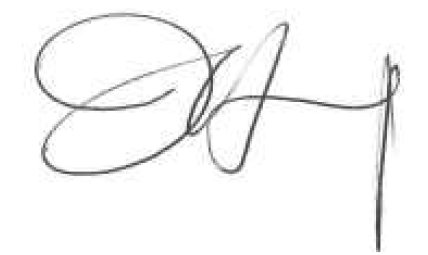 XuRongJiang Signature